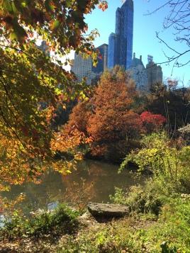 Photo Nov 08, 14 14 50