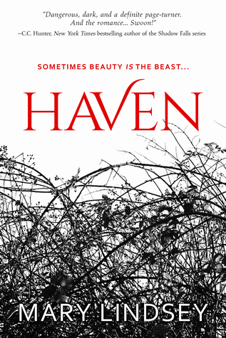 Blog Tour: Haven by Mary Lindsey!
